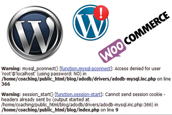 Fix your wordpress error issue