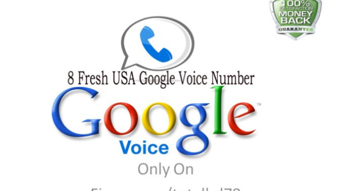 Provide you 8 USA Google Voice Account with Fresh Numbers