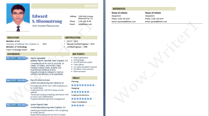 Resume, CV and Cover Letter Genius Plus Service