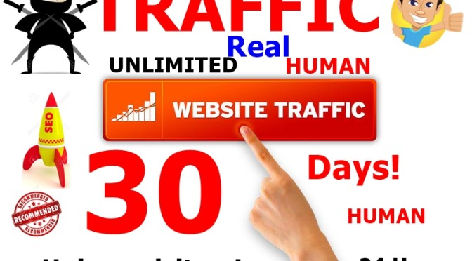 Send unlimited web traffic to promote your link,business