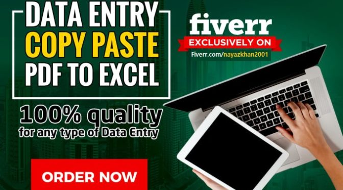 Do Excel Data Entry