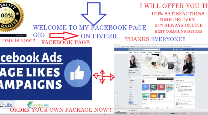 Create a highly converting facebook page for ads ROI