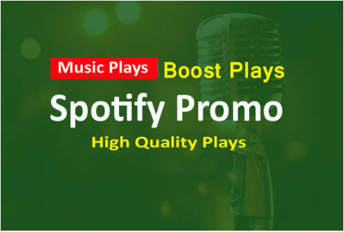 Promote your song to 5000 real hip hop playlist curators