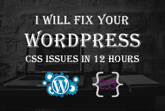 Fix your WordPress CSS issue quickly, FiverrBox