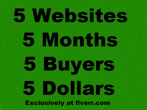 Promote And Advertise Your Marketing Link On My Websites