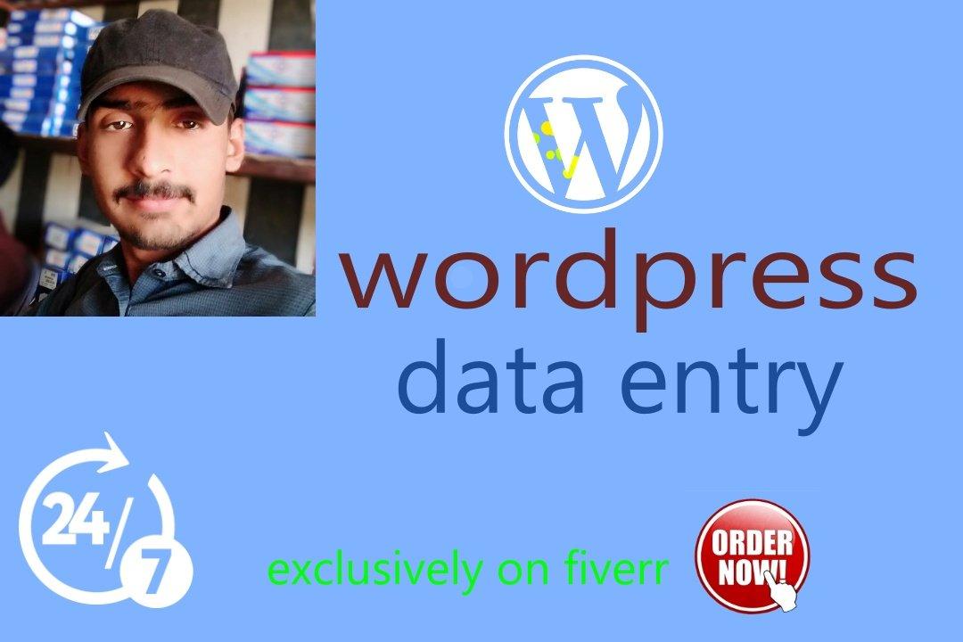 Do wordpress data entry, FiverrBox