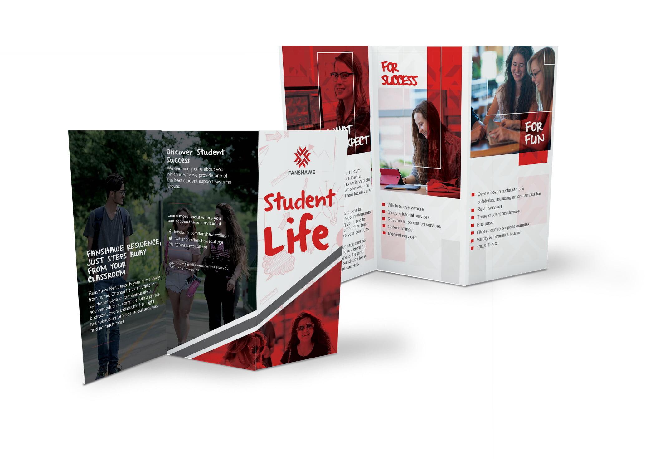I will do superb brochure, catalog and magazine etc, FiverrBox