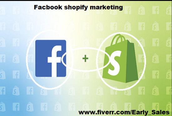 I will do sales facebook marketing for shopify marketing and ecommerce marketing