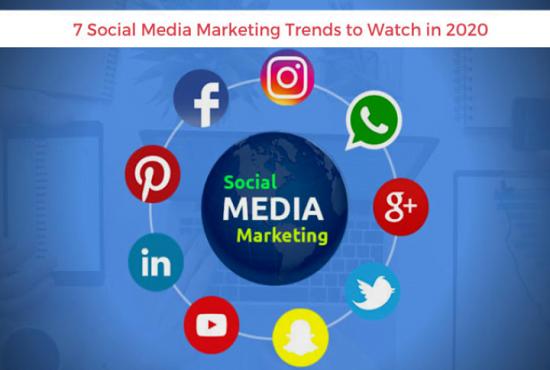 I will be your expert social media manager,social media marketer