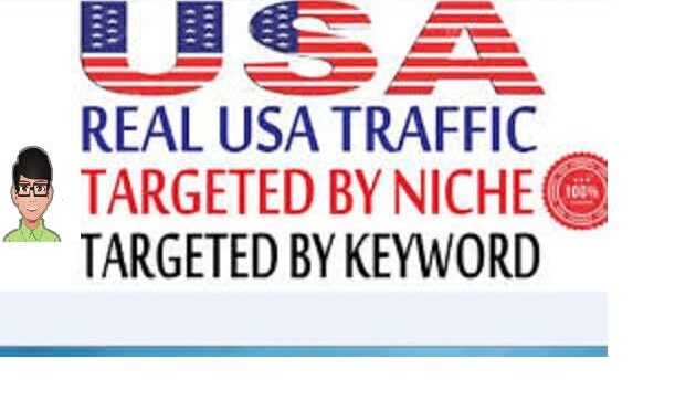 Skyrocket 30 real and organic USA traffic to your website