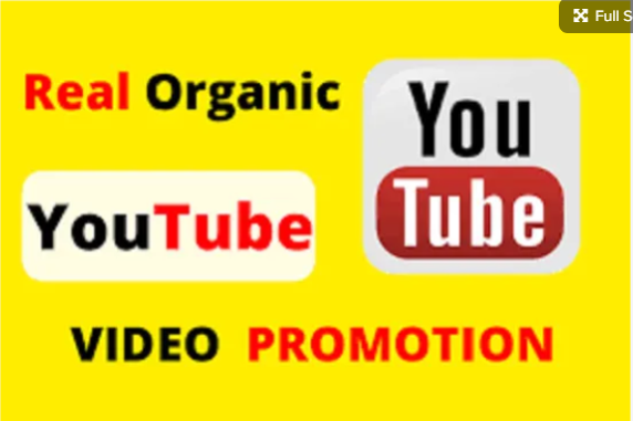 I will organic youtube video promotion and video marketing, FiverrBox