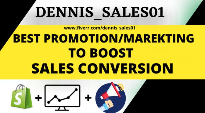 I will do shopify marketing, shopify promotion, shopify traffic, ROI sales conversion