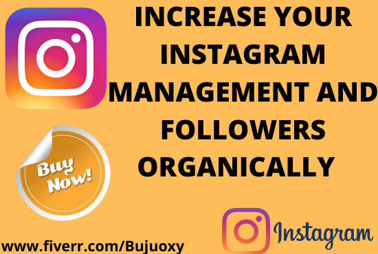 I will market and promote, increase followers and your instagram engagement, FiverrBox