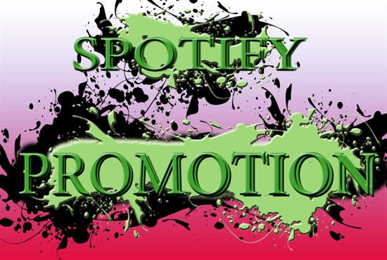 I will do organic, worldwide, spotify promotional campaign do organic, worldwide, spotify promotional campaign