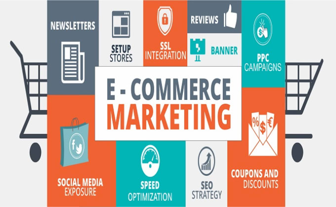 I will do ROI sales conversion, shopify promotion, and ecommerce marketing, FiverrBox