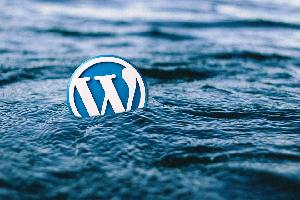 I will design a wordpress and wix website or transfer your website, FiverrBox