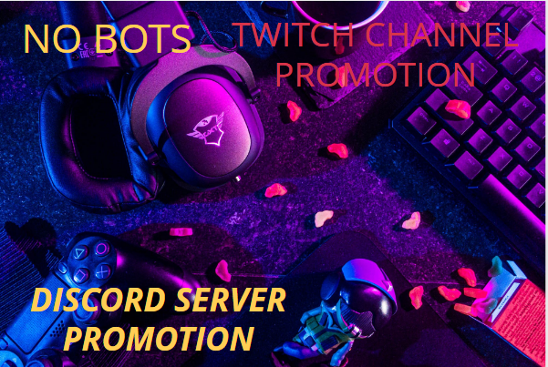I will do discord promotion, advertise your channel to active real members, FiverrBox