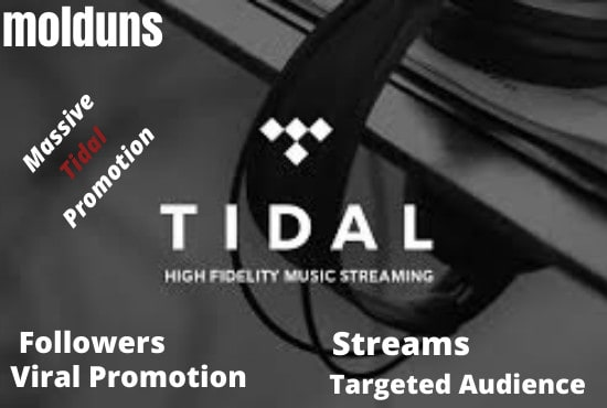 I will promote your tidal and soundcloud music and get more streams with much streams, FiverrBox