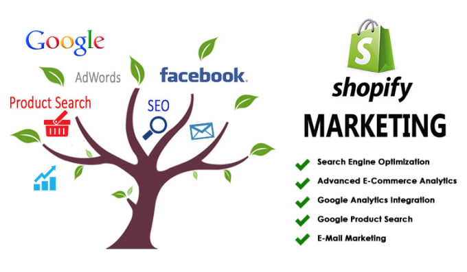 I will run shopify store marketing facebook ad sales ROI conversion, FiverrBox