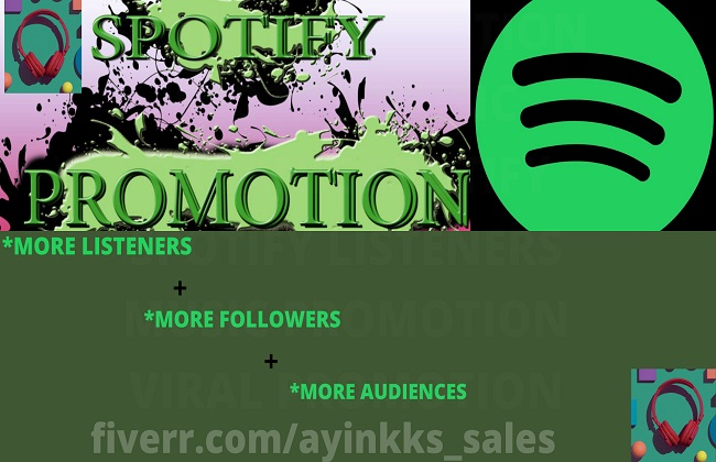 I will do organic spotify promotion for music to spotify listeners, FiverrBox
