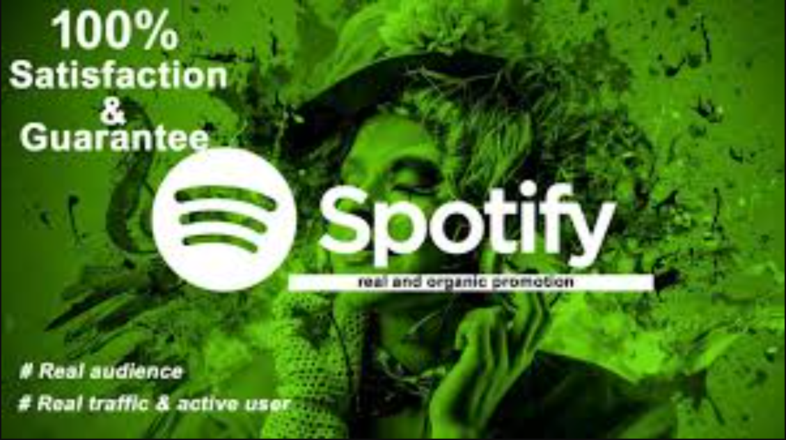 I will do organic Spotify promotion for your song and make it viral, FiverrBox