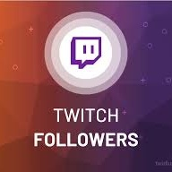 I will do organic and effective promotion for your twitch channel, FiverrBox