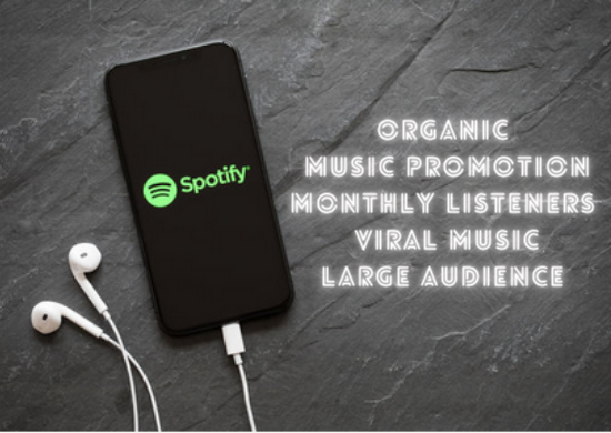 I will do organic viral spotify music promotion to skyrocket monthly listeners, FiverrBox