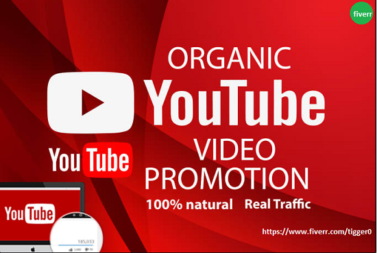 I will do superfast organic youtube promotion with impressive results for you, FiverrBox