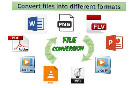 I will do the fast conversion of any file to all other formats, FiverrBox