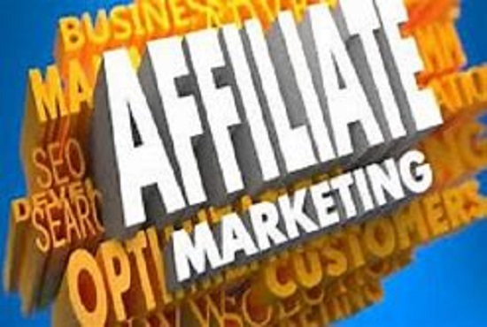 I willdo clickbank affiliate marketing, promotion click funnels, landing page, FiverrBox