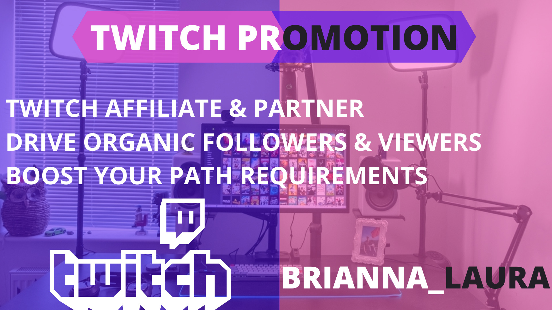organically do twitch promotion for your twitch channel, FiverrBox