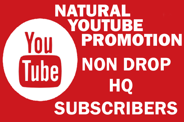 I will do YouTube channel promotion, video marketing organically, FiverrBox