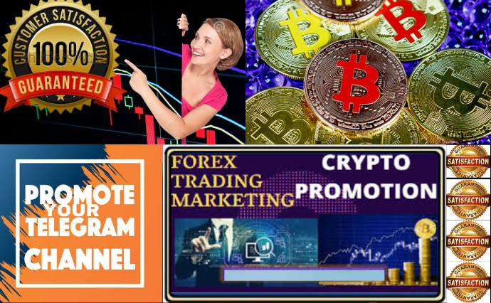 I will do an effective telegram promotion crypto forex bitcoin, FiverrBox