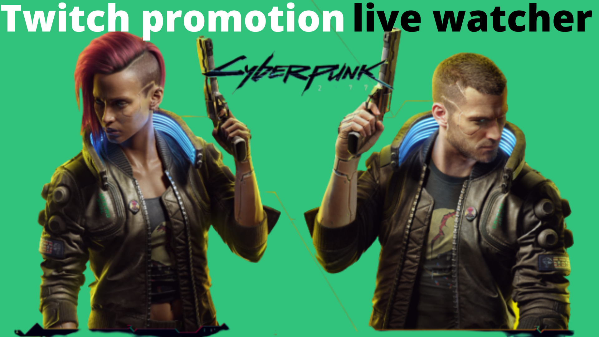 I will twitch promotion, twitch live viewers twitch subs, get ranked, FiverrBox