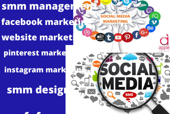 I will be your social medial manager and grow your business with my smm strategy, FiverrBox