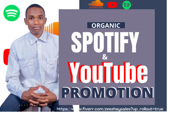 I will drive a fantansic organic music and youtube or amazon promotion, FiverrBox