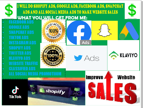 I will shopify ads, facebook ads, snapchat ads, google ads to, FiverrBox