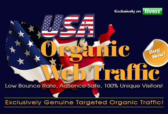 I will drive USA targeted low bounce rate organic web traffic, FiverrBox