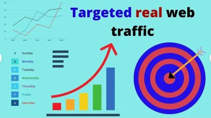 I will drive USA organic targeted web traffic real visitors, FiverrBox