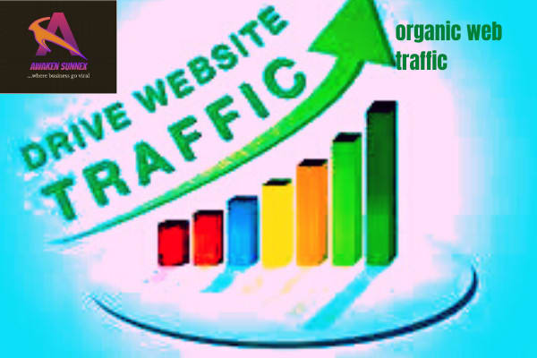 I will do organic web traffic promotion to increase website engagement, FiverrBox