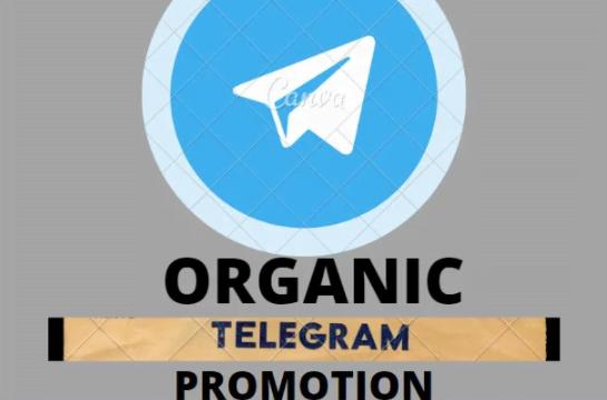 I will DO ORGANIC TELEGRAM PROMOTION FOR TELEGRAM CHANEL, FiverrBox