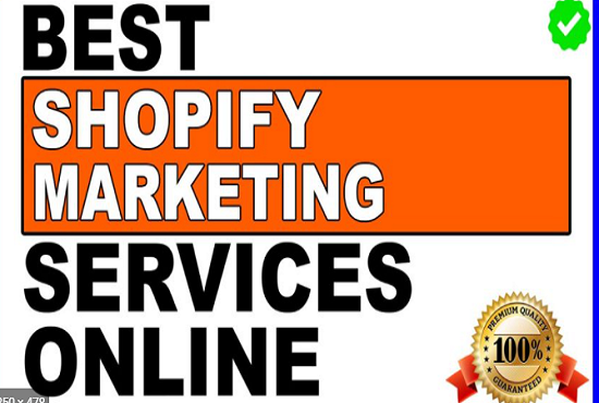 I will shopify marketing promotion facebook ads shopify traffic, FiverrBox
