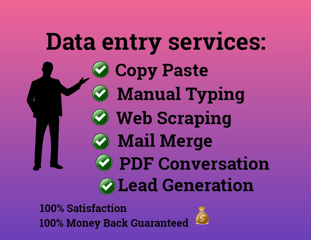 I will perfect large data entry, FiverrBox
